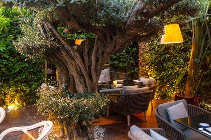 Zela Ibiza Restaurant
